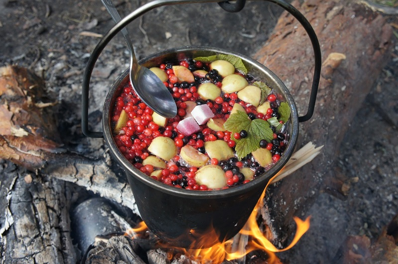 немногих фото еда на костре фотографий бертрана